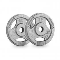 IP3H 2.5 Hantelscheiben Paar 30 mm 2,5 kg Grifflöcher grau